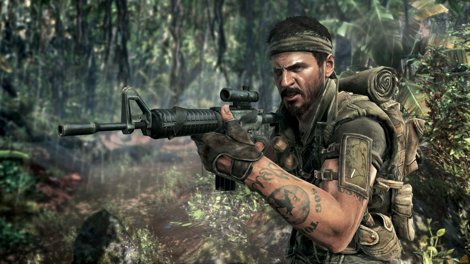 http://1.bp.blogspot.com/_quOC2vwSKQ4/TSnEKTyc5fI/AAAAAAAAAKE/_kg5rNQ9Z5Q/s1600/call-of-duty-black-ops-screenshot-main-character-jungle-face.jpg