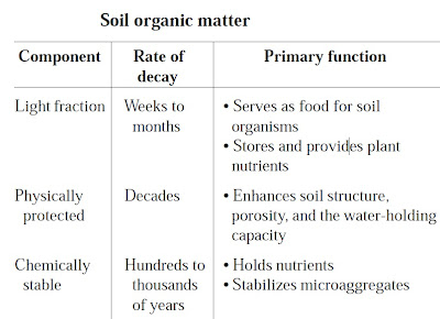 What is organic matter and why it is important ecomerge for Importance of soil minerals