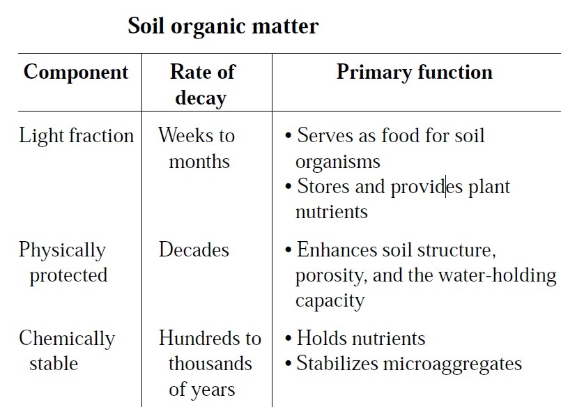 Ecomerge project seasonal food portland state for Soil organic matter