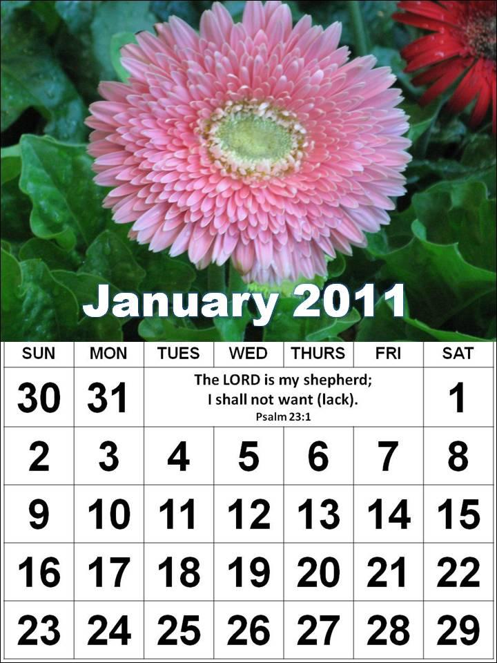 calendar january 2011. calendar january 2011.