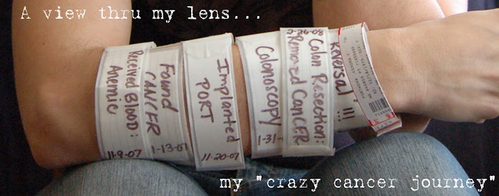 A view thru my lens...my Crazy cancer journey.
