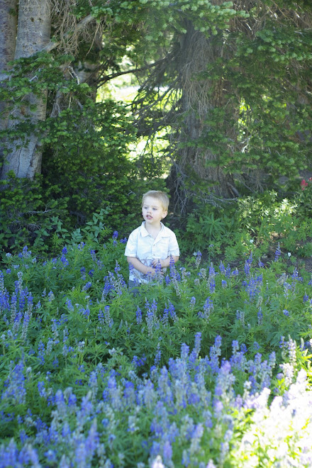 Ethan in the wild flowers