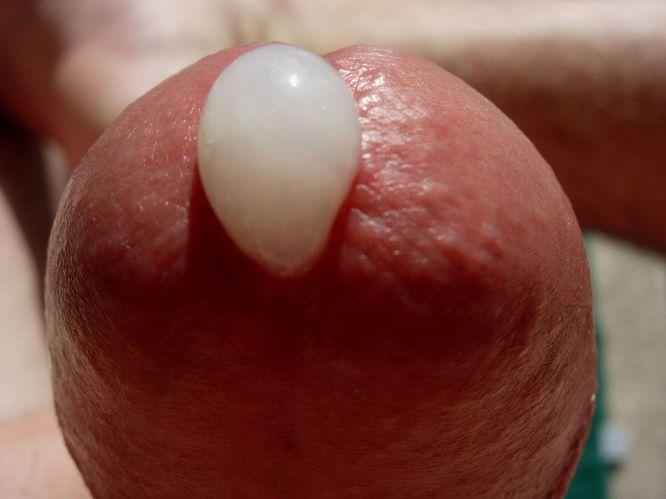 Close Up Cum Shots 29