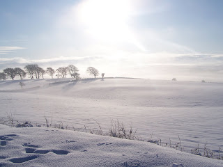 Snow covered Field New Cumnock Ayrshire