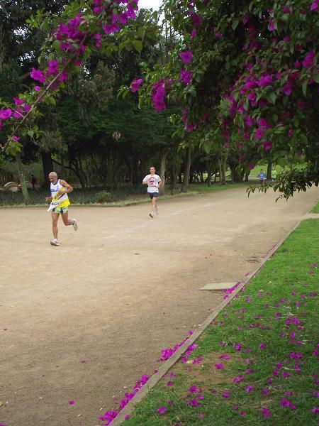 rústica, maratona, Parque Farroupilha, Redenção, Porto Alegre, Rio Grande do Sul, Brasil