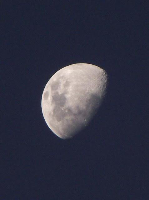 foto da lua no céu de porto alegre