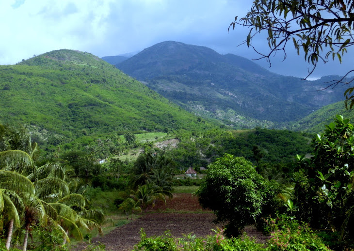 The Beautiful Countryside of Cavaillon, Haiti
