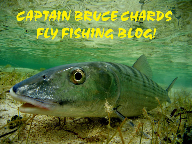 CAPTAIN BRUCE CHARDS FLY FISHING BLOG!