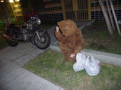Shopping Bear, smoking on the Lawn, with a Motorcycle