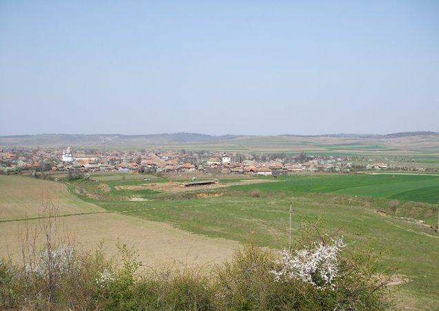 Vedere generala a comunei Rogova din dealul Tiganului