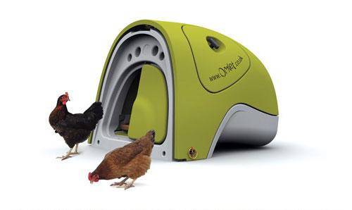 ثقافة التصميم creative+chicken+coo