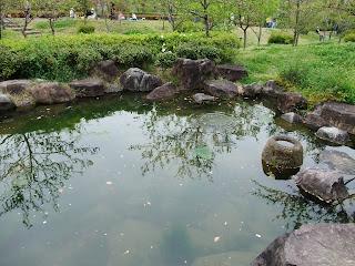 藤田邸跡公園の日本庭園の池
