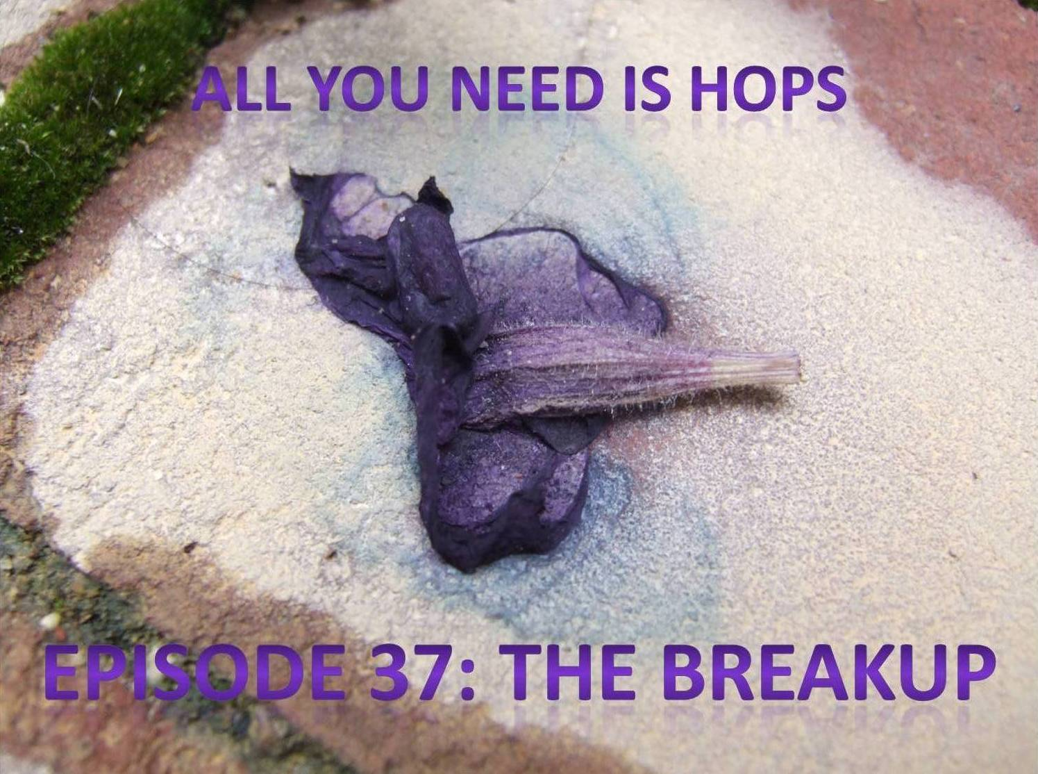 all you need is hops episode