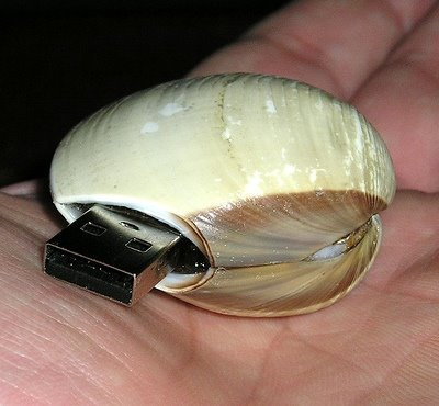 Clam flash USB drive