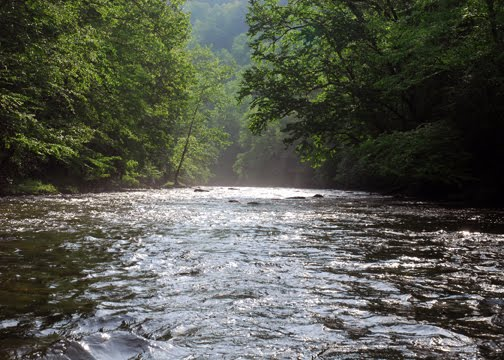 Southern fly fishing cherokee nc for Fly fishing cherokee nc