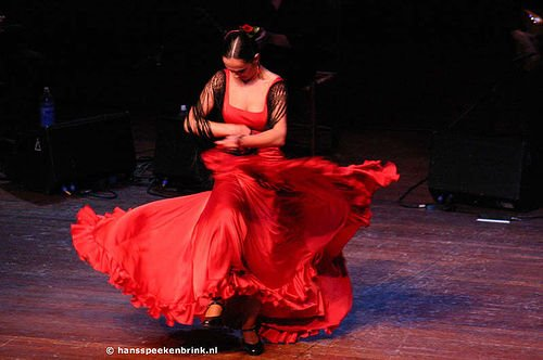Amo o Flamenco!Olé!