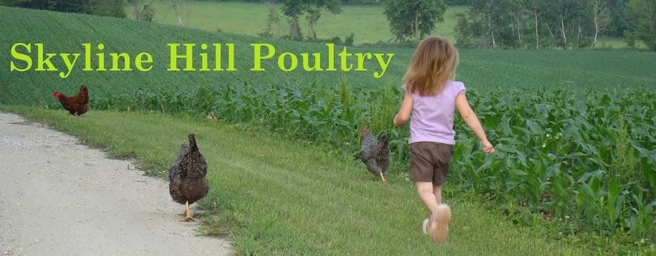 Skyline Hill Poultry