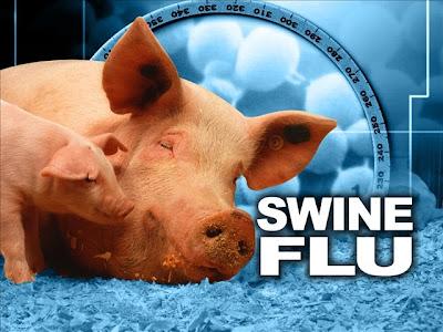 Langkah-Mencegah-penularan-flu-babi
