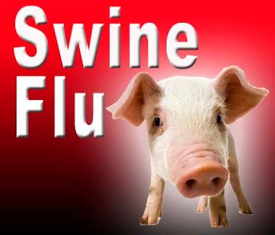 Cara-Penularan-Flu-Babi-dan-masa-inkubasi-flu-babi