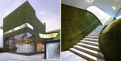 Modern-Green-House-Living-architecture
