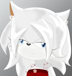 Ookami The Wolf