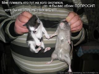 http://1.bp.blogspot.com/_rF6cCVDR5XQ/S5_n0x-YC1I/AAAAAAAAABg/iebiltPRoUs/s320/351944.jpg