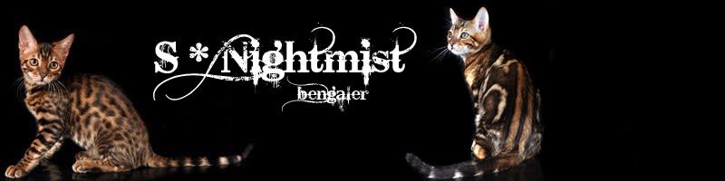Nightmist bengaler