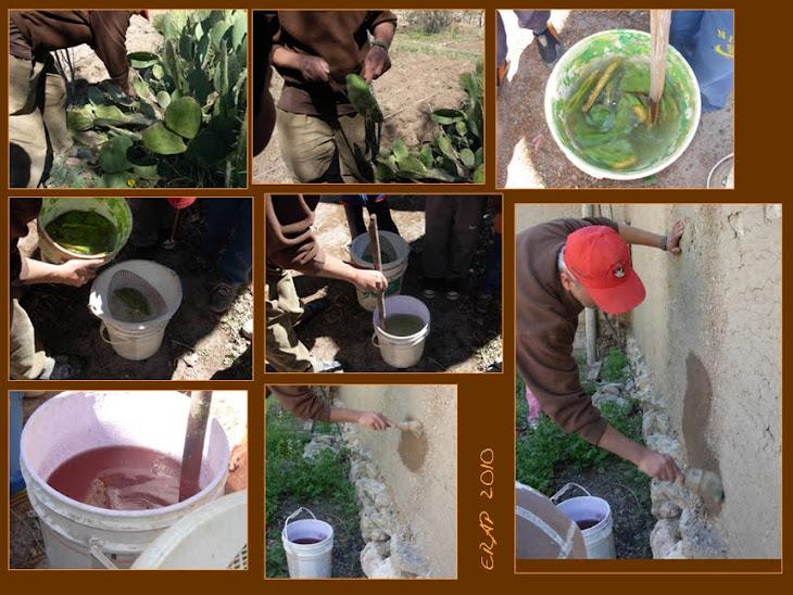 Preparamos pinturas naturales con cactus, sal, arcilla y agua.