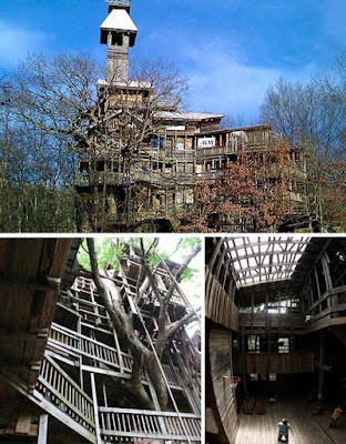 World's Largest Giant Tree House