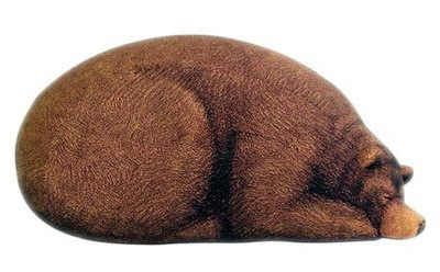 Sleeping Grizzly Bear Bean Cool Bag