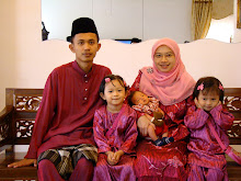 AIDILFITRI 2008