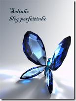 Premio Blog Perfeitinho