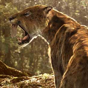 saber tooth tiger ice age  Animated Sabertooth Tiger Picture