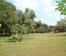 Campo Grande (desatualizado)