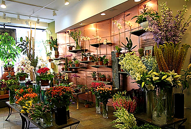Flower shop pictures beautiful flowers for Flower shop design layouts