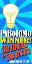 PiBoIdMo Winner - 2009