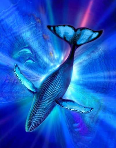 el mundo marino: