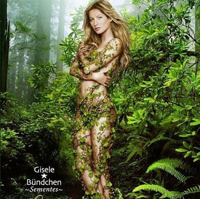 green, eco, sementes, florestas