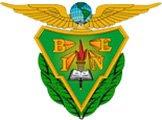 Página web del BINE