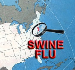 swine flu effects on travel industry The swine flu outbreak is already starting to have an impact on international travel and on trade some economists are forecasting a hit to stock markets of up to 7 per cent as a result of who's decision to upgrade the threat alert to level four the tourism industry is in the front line when international travel gets restricted.