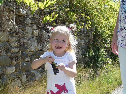 Selina gaat druiven plukken. Vakantie 2009