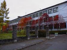 Здание гимназии №13