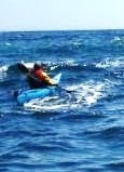 The Acadian Kayaker