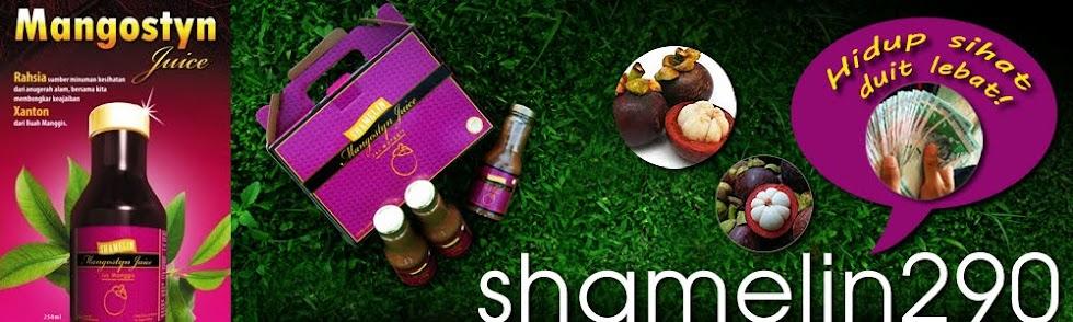 shamelin290