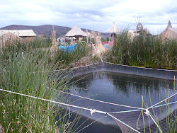Fish Pens, Uros Islands, Floating Reed Platforms, Lake Titicaca