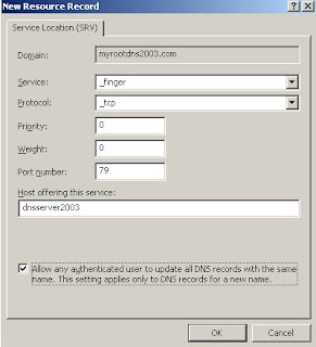 Domain Network Systems (DNS) Information: Create SRV record