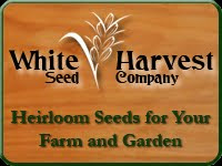 Great Seed Company
