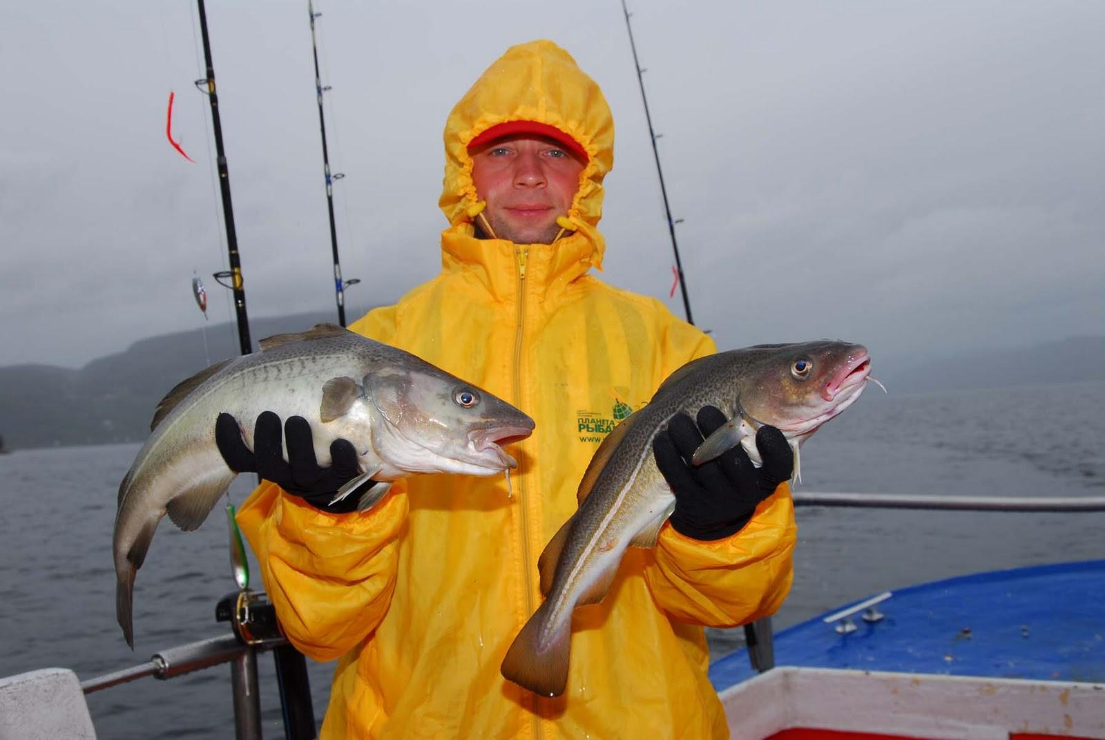 рыбалка в сентябре в норвегии