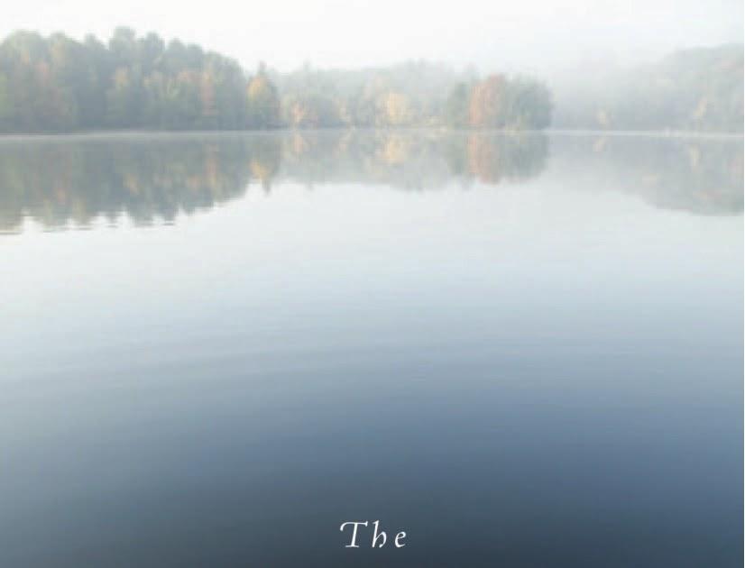 Laraine Herring Authors Blog The Writing Warrior