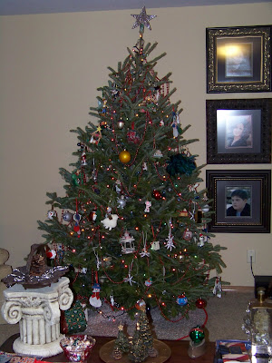 This next tree is our live tree - the one we put our presents under ...